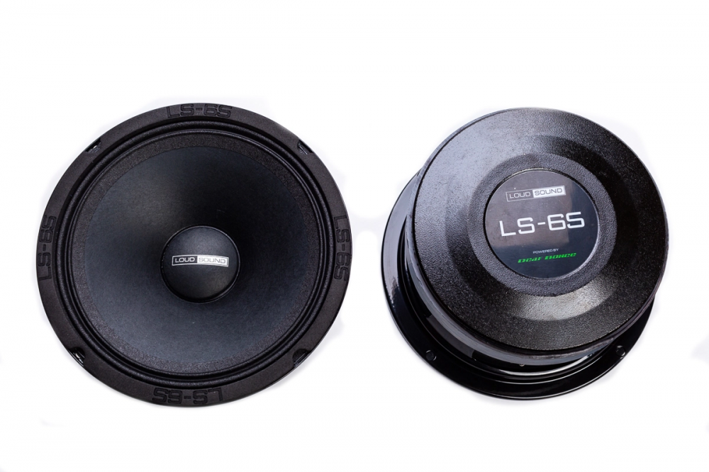 Динамики LOUD SOUND LS-65